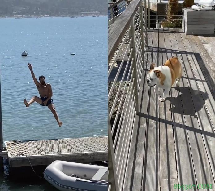 克莱怪异姿势跳海 吓得Rocco落荒而逃🤣